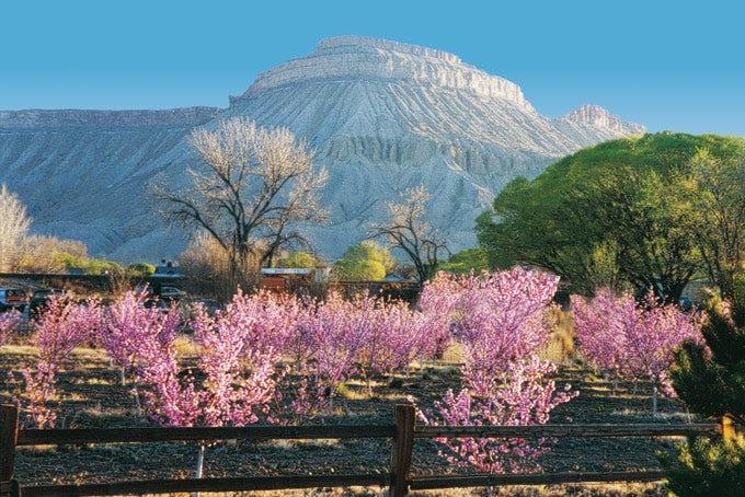 22 Tage Best of Utah & Colorado