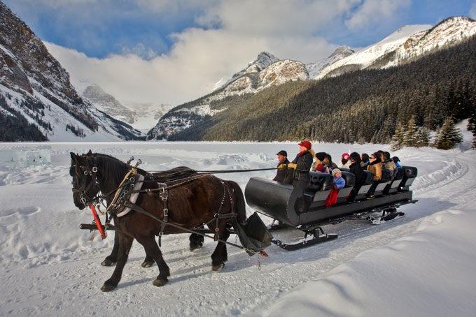 Schlittenfahrt Banff