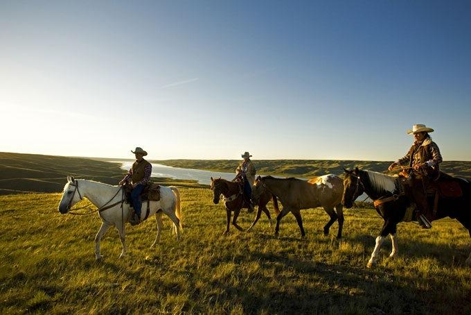 11 Tage Cowboy-Feeling auf der La Reata Ranch inkl. Flug