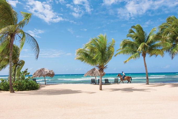 13 Tage Jamaika für Beginner inkl. Flug und Hotels