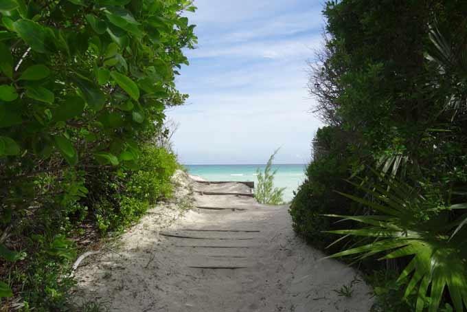 Grand Bahama - Lucayan National Park Kayak & Nature Tour