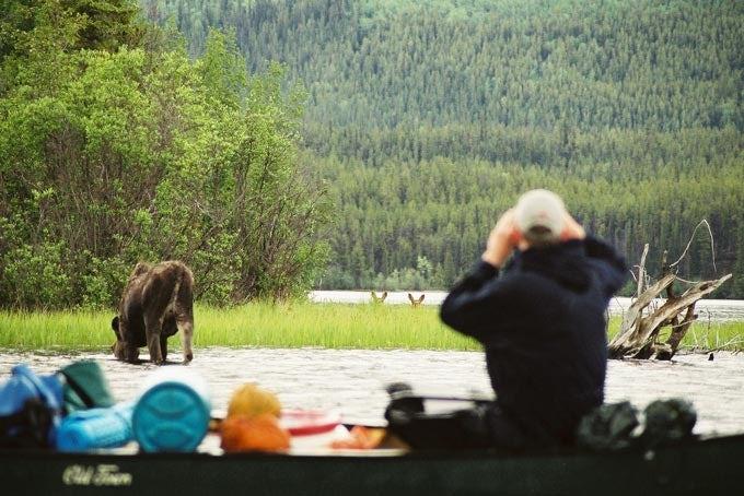 20 Tage Kanutour auf dem Yukon River - Lake Laberge bis Dawson City