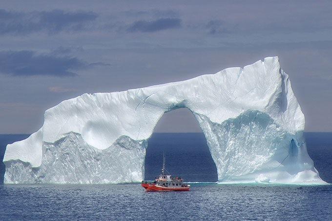 Eisberg-Entdeckungstour - Wale, Eisberge und Papageitaucher