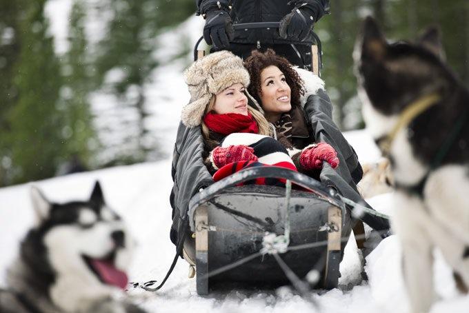 Hundeschlittentour in Jasper