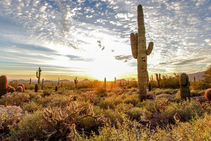 16 Tage Arizona - der Bundesstaat des Grand Canyons inkl. Flug