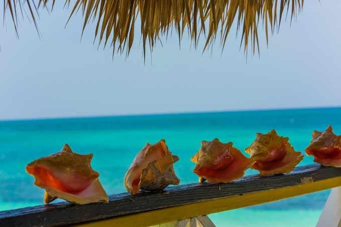 14 Tage Farbenfrohe Bahamas inkl. Flug