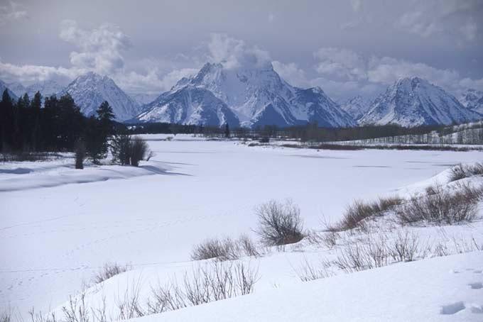 8 Tage Yellowstone: Tiere im Winter zu Fuß entdecken