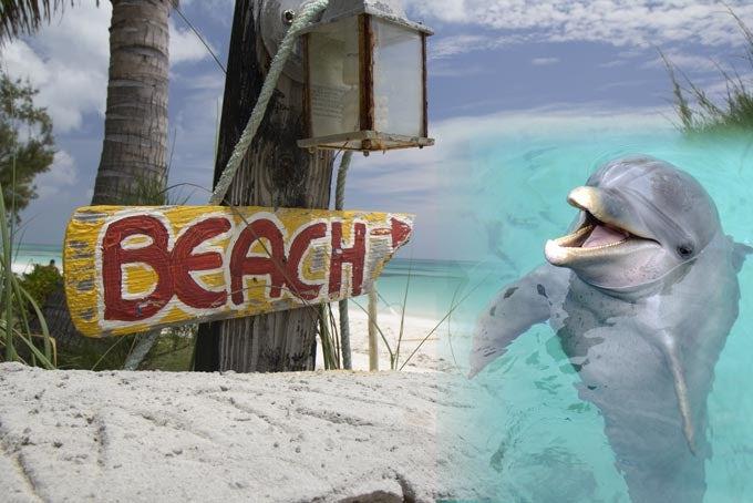 14 Tage Florida & Bahamas Highlights