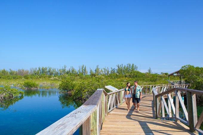 Grand Bahama - Off-Road ATV, Tropical Garden & Beach